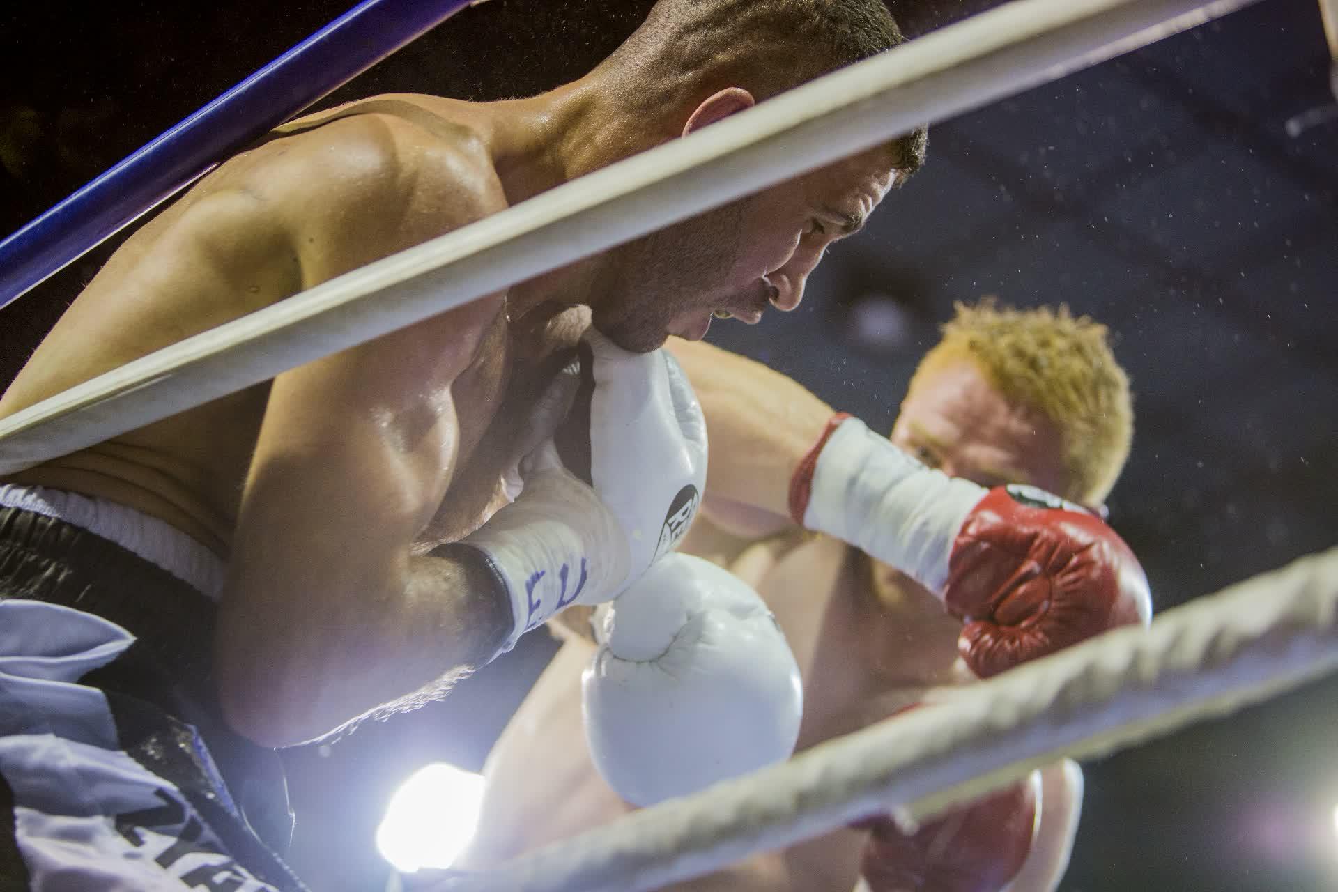 Combat de boxe - FFBoxe